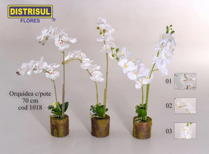 1018 - Orquídea com pote