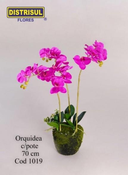 1019 - Orquídea com pote
