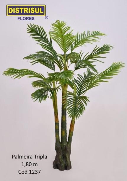 1237 - Palmeira Tripla