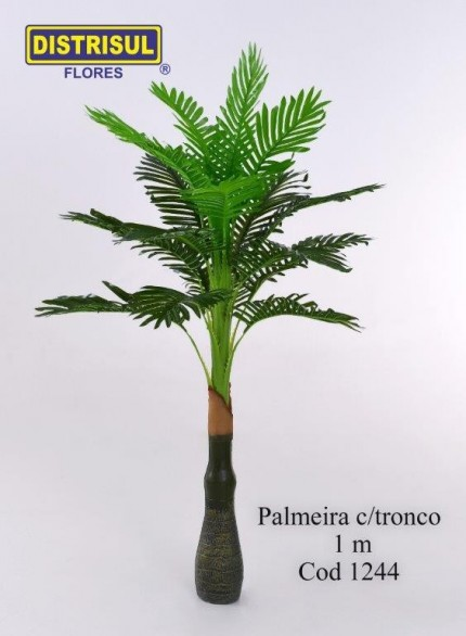 1244 - Palmeira com tronco