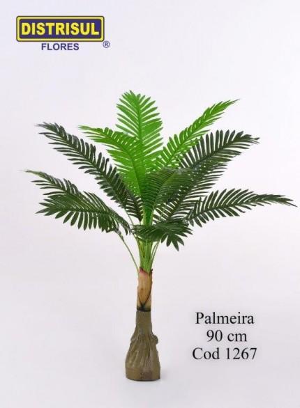 1267 - Palmeira