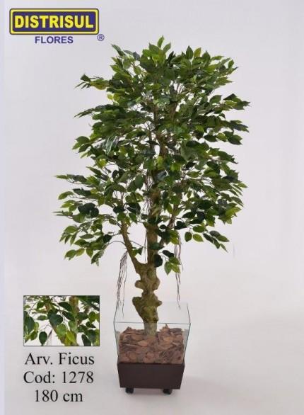 1278 - Planta Ficus - 1,80m