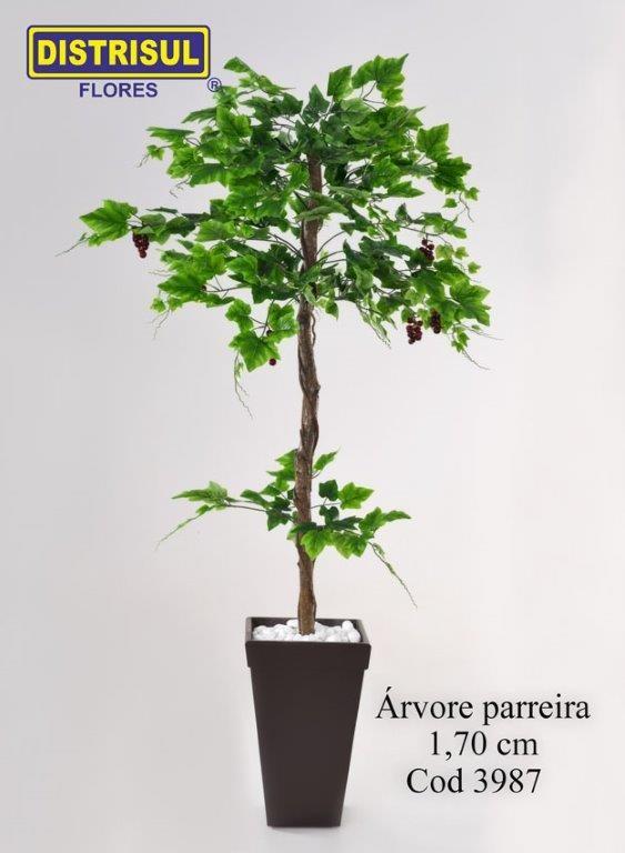3987 - Árvore Parreira