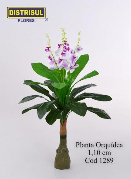1289 - Orquídea