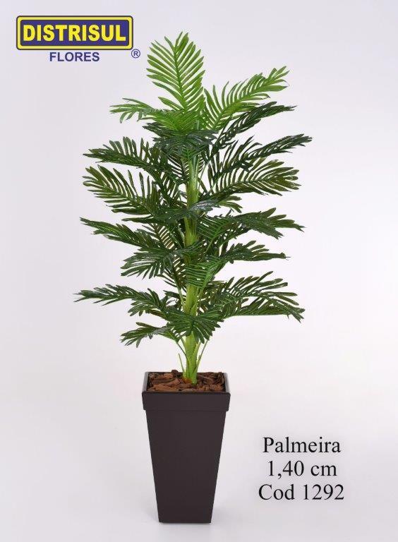 1292 - Palmeira