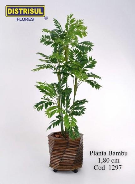 1297 - Planta Bambu