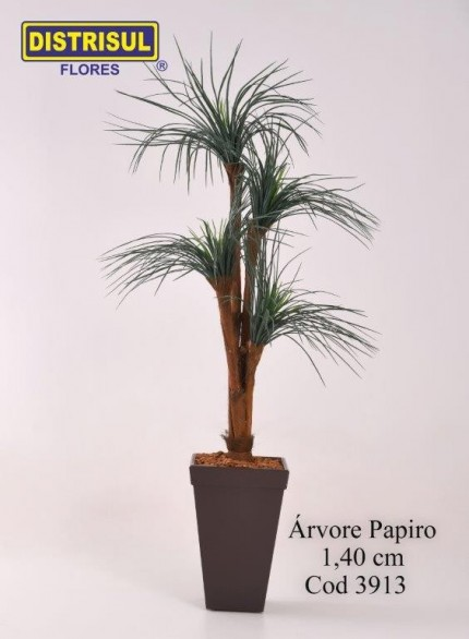3913 - Árvore Papiro