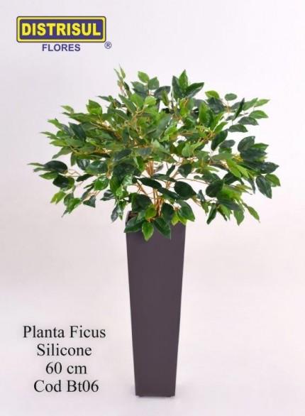 Bt06 - Planta Ficus Silicone