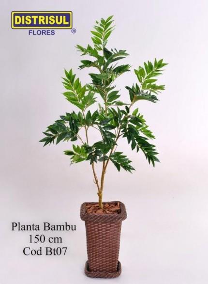 Bt07 - Bambu