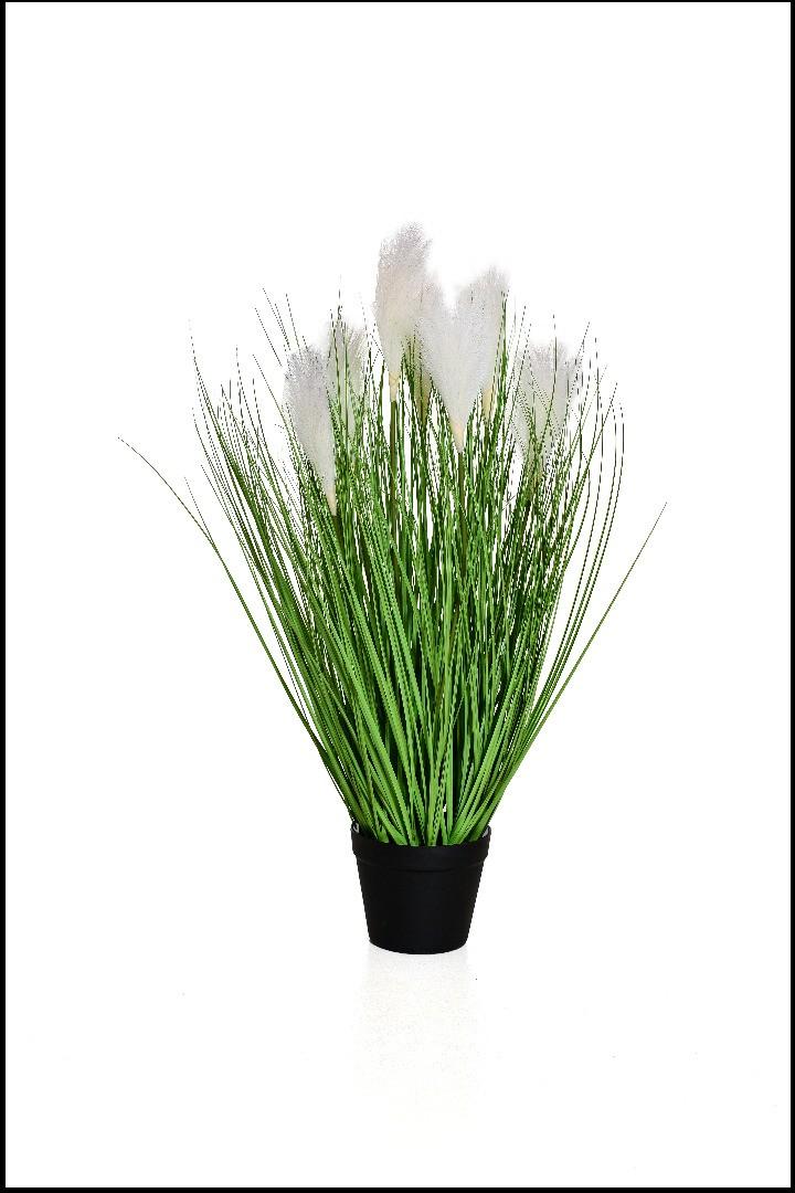 YF42018 - Capim Com Flor 0.70 Cm