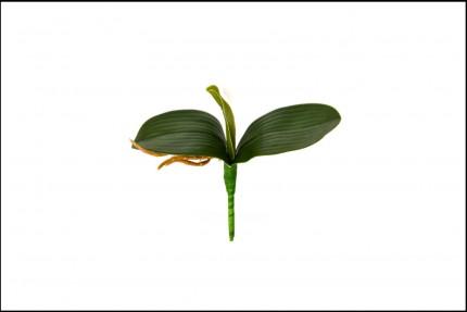 WK18061 - Folha de Orquídea - 22 Cm