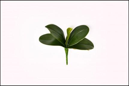 WK18062 - Folha de Orquídea - 20 Cm