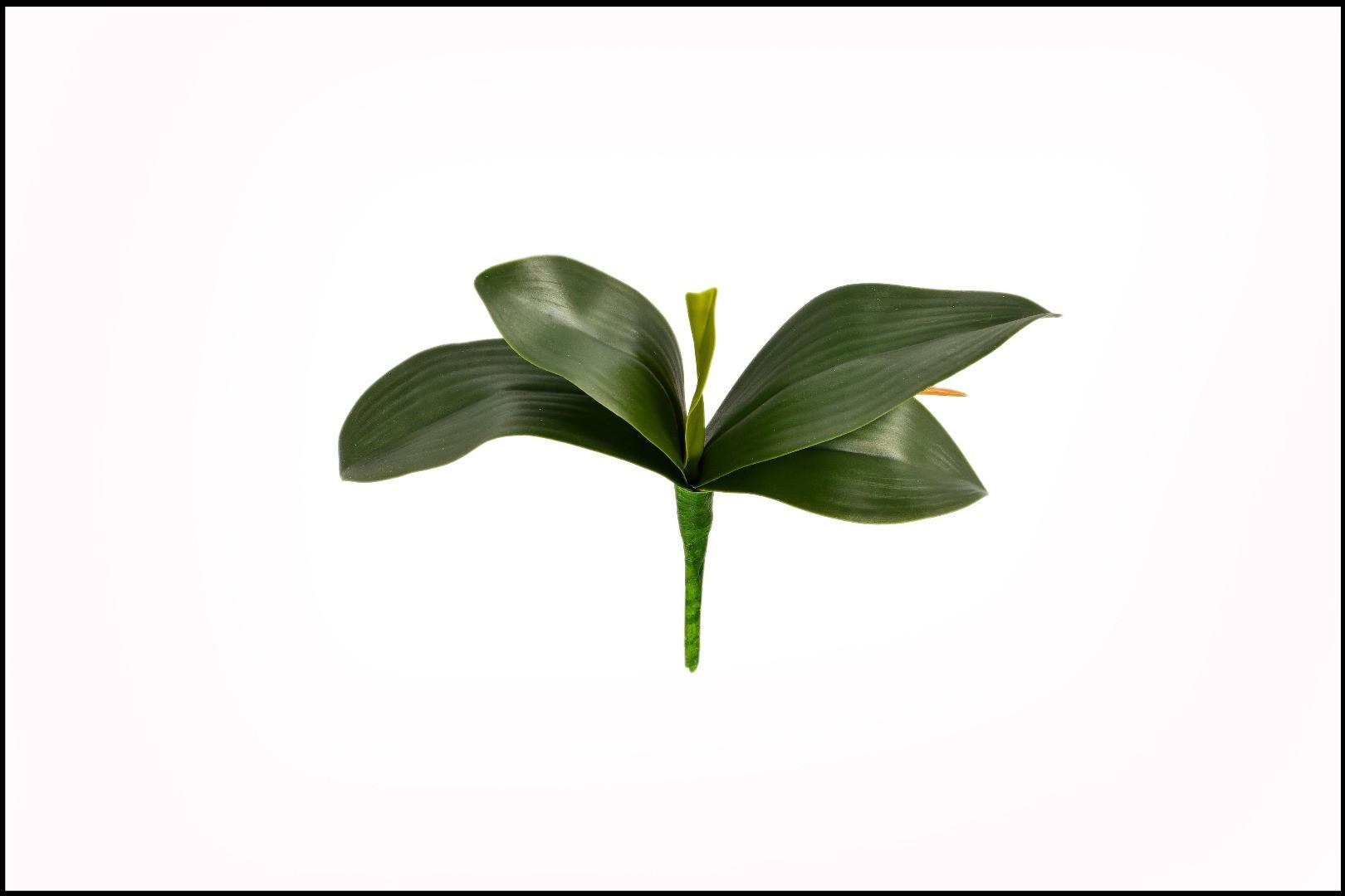 WK18063 - Folha de Orquídea - 25 Cm