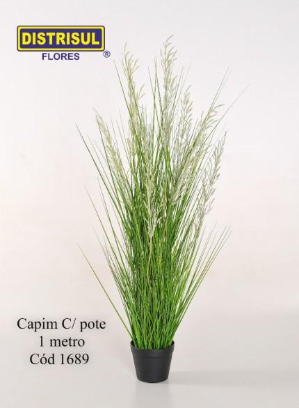 1689 - Capim C/ Pote - 1689