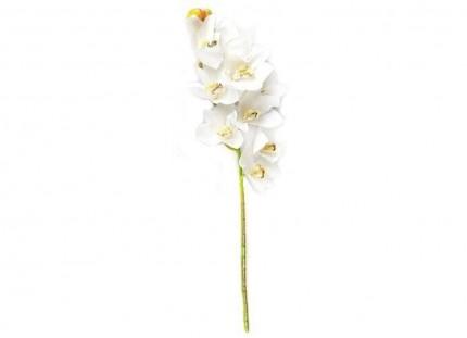 4261 - Orquídea Toque Real - 4261